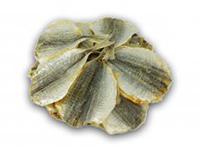 Желтый полосатик солено-сушеный